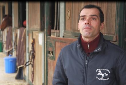 Alberto Boscarato, Direttore della Scuola Padovana di Equitazione