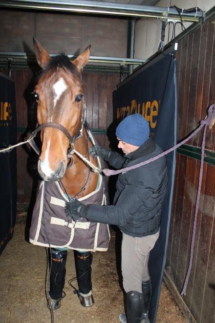 Alberto Boscarato, Direttore della Scuola Padovana di Equitazione, cavalca per VITA LIFE in occasione di Jumping Parma